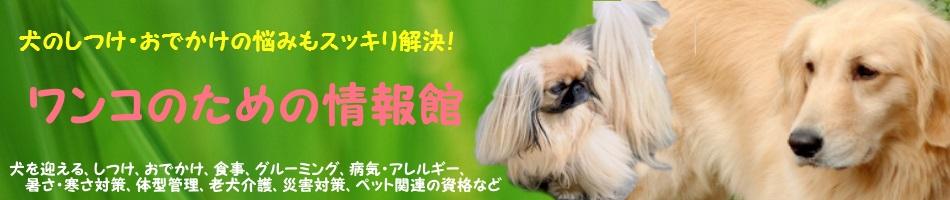 犬のしつけ・お出かけの悩みもスッキリ解決!ワンコのための情報館